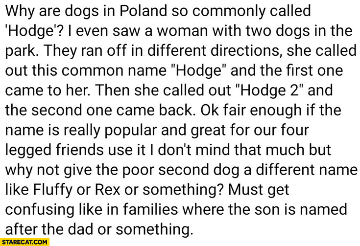 Why are dogs in Poland called hodge? Woman with two dogs hodge and hodge 2