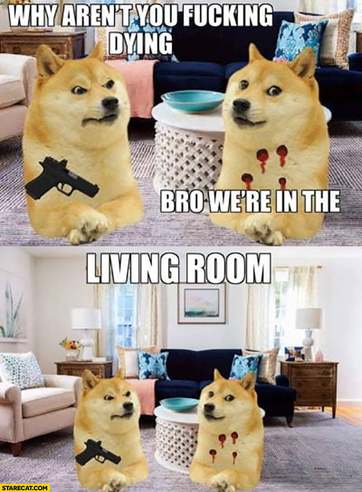 Why aren't you dying? Bro we're in the living room dog doge