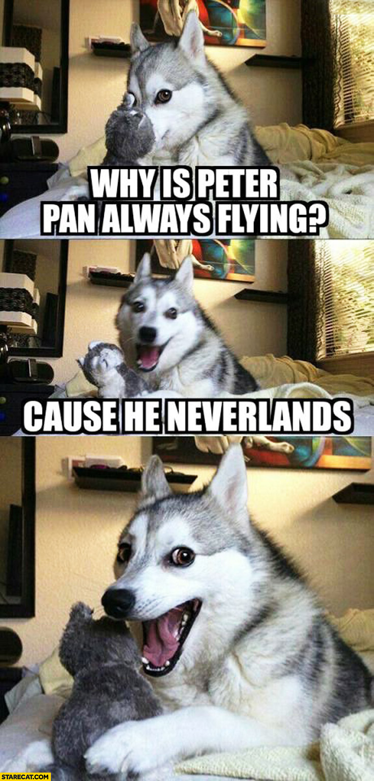 Why is Peter Pan always flying? Cause he neverlands dog meme