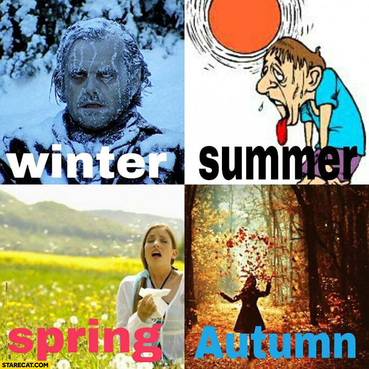 Winter summer spring autumn how it really looks like