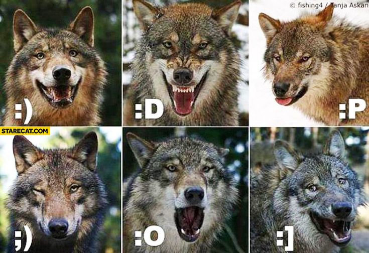 Wolf emoji emoticons smily faces