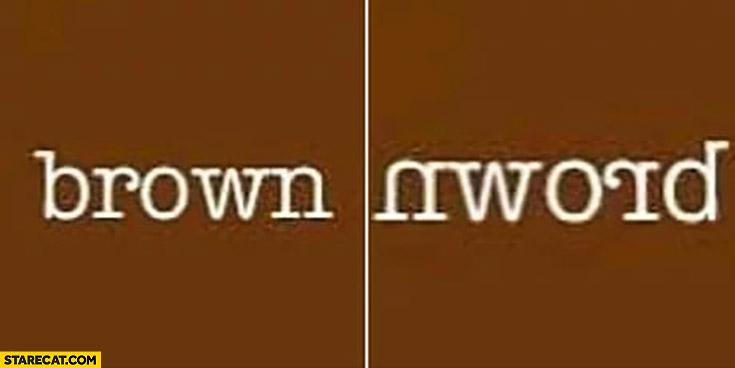 Word brown spelt backwards in a mirror looks like nword