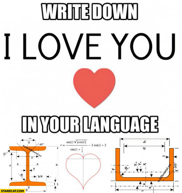 Write down I love you in your language math engineer