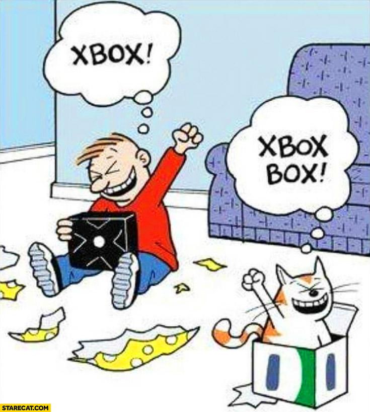 Xmas gift xbox cat box from xbox