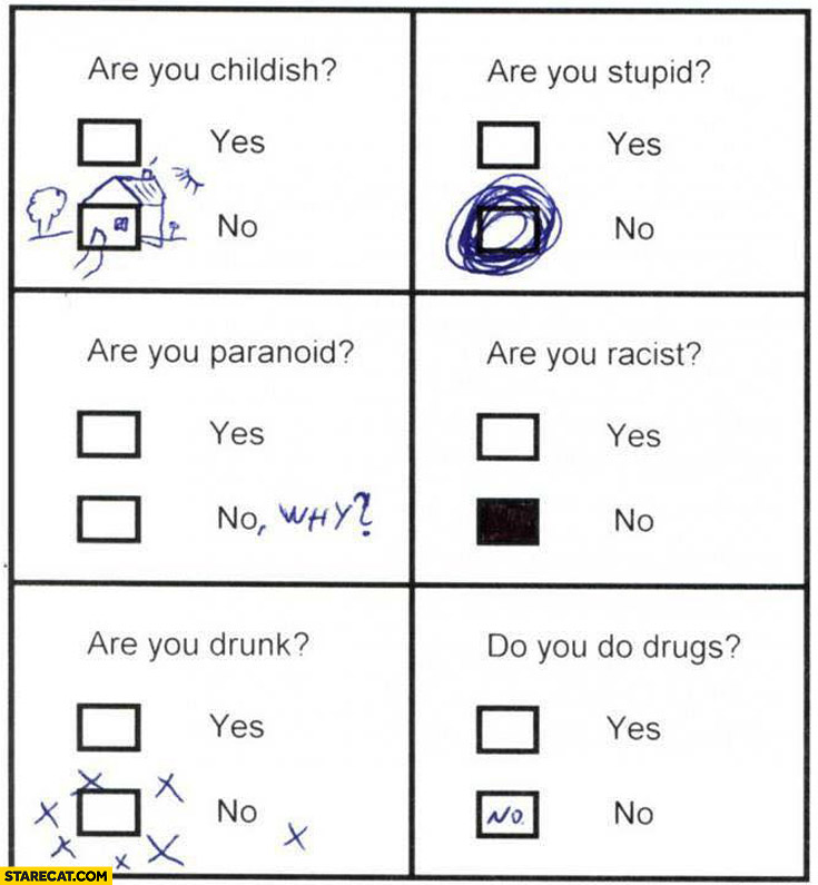 Yes no Are you childish? Are you stupid? Are you paranoid? Are you racist? Are you drunk? Do you do drugs?