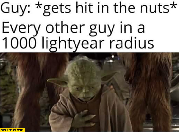 Yoda gets hit in the nuts, every other guy in a 1000 lightyear radius huh