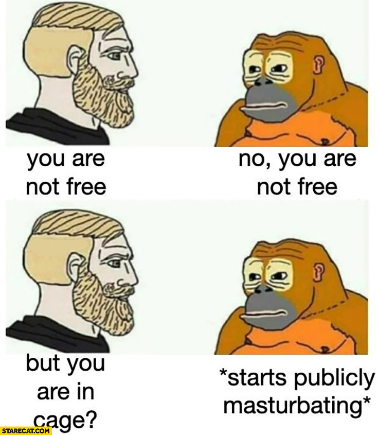 You are not free monkey chimpanzee, no you are not free, but you are in a cage? Starts publicly doing non acceptable behavior