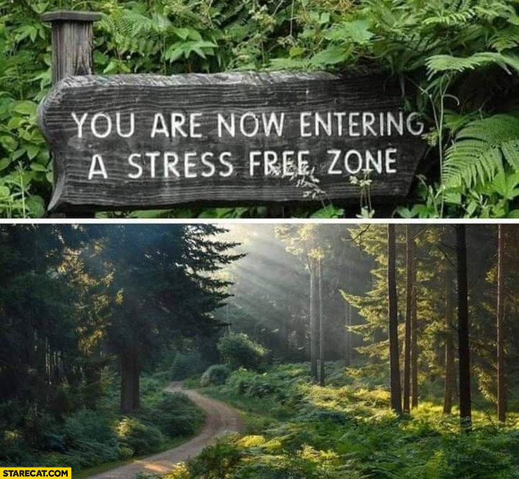 You are now entering a stress free zone nature forest