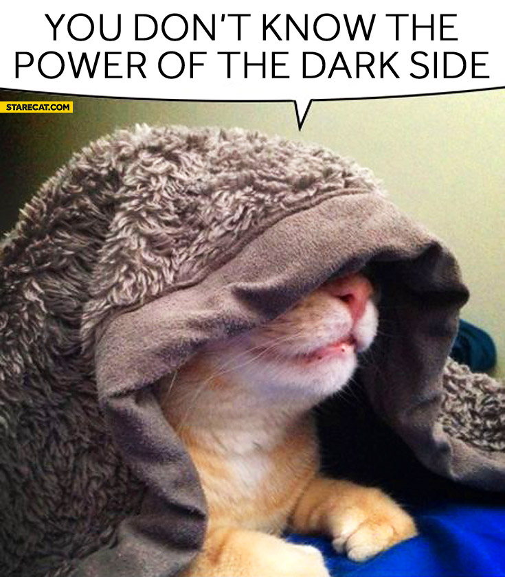 You don't know power of the dark side cat