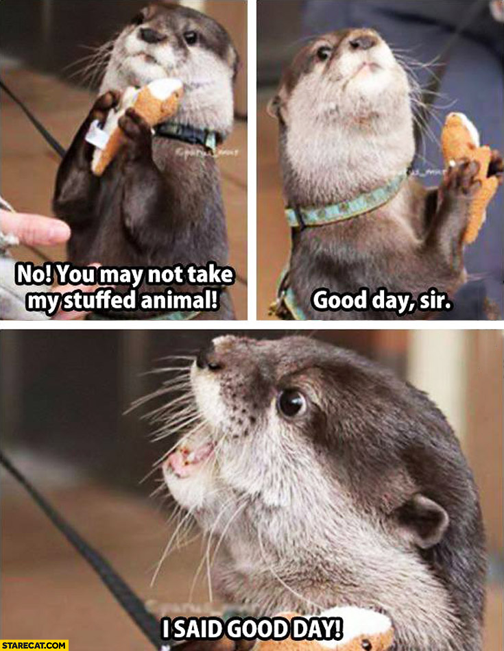 You may not take my stuffed animal good day sir I said good day