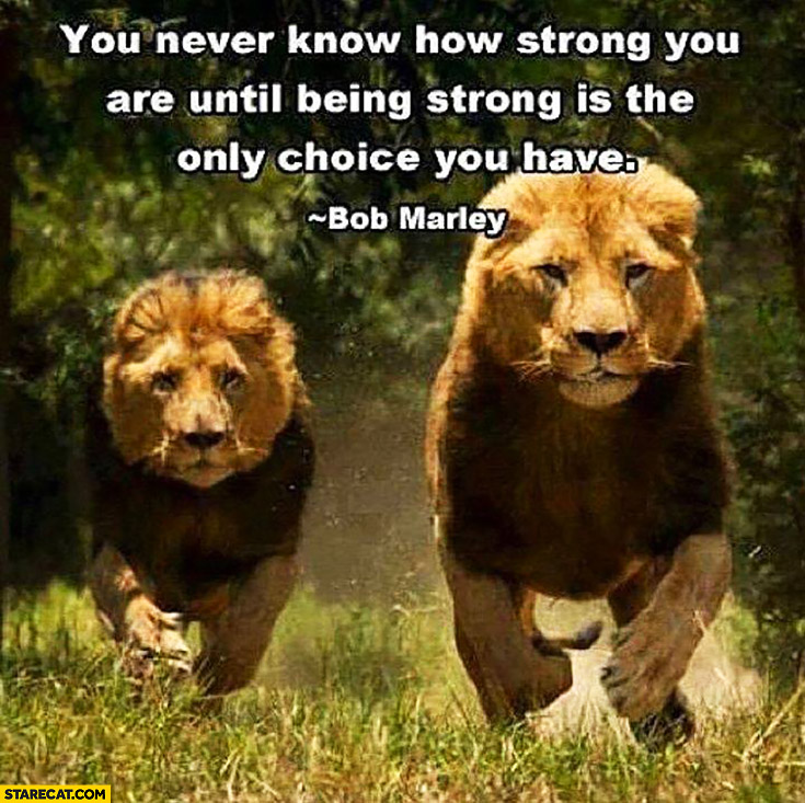 You never know how strong you are until being strong is the only choice you have Bob Marley quote