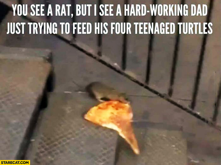 You see a rat but I see a hard working dad just trying to feed his four teenaged turtles