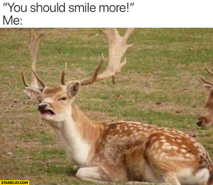 You should smile more deer with silly face