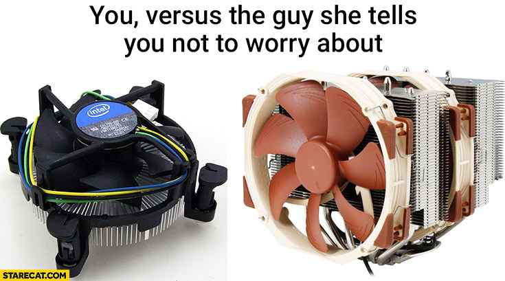 You versus the guy she tells you not to worry about CPU fans