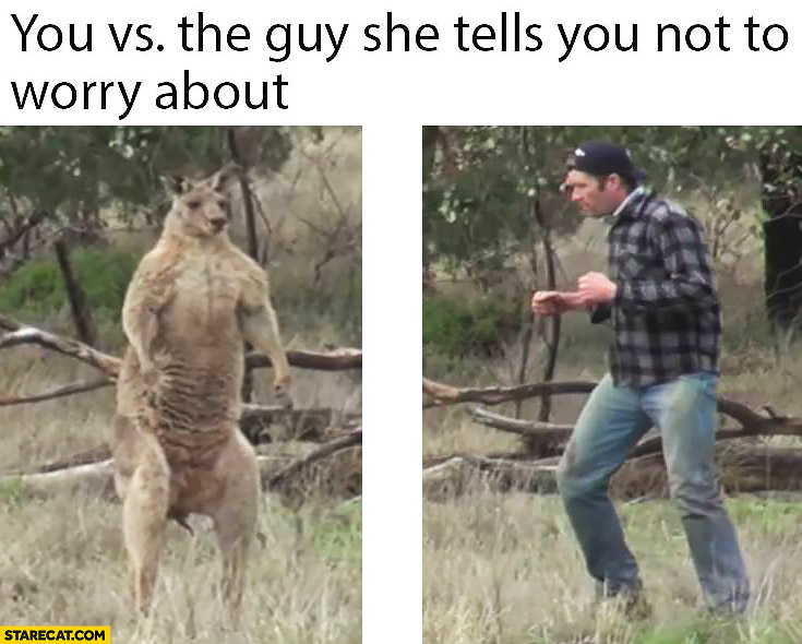 You vs the guy she tells you not to worry about. Man punches kangaroo in the face