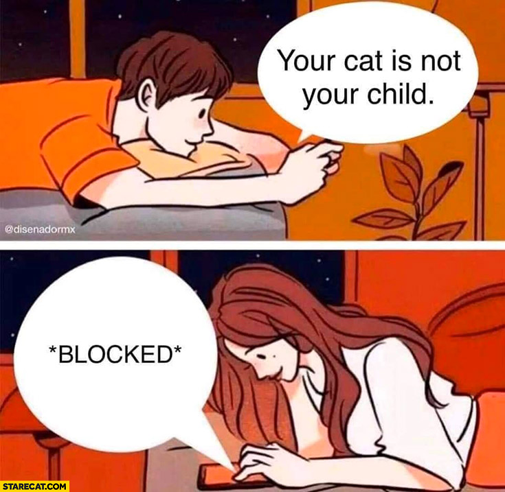 Your cat is not your child, blocked on chat