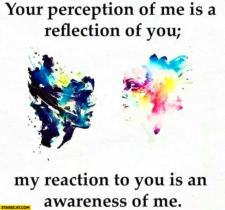 Your perception of me is a reflection of you my reaction to you is an awarness of me inspirinq quote