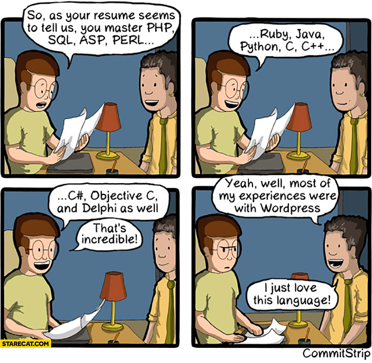 Your resume says you master PHP, SQL, ASP, Perl, Ruby, Java, Python, incredible. Yeah most of my experiences were with WordPress, I just love this language comic