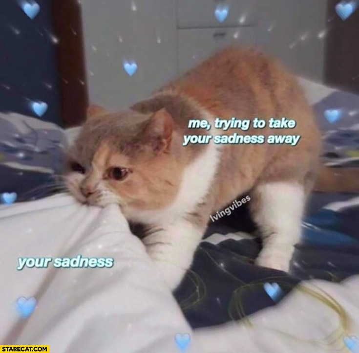 Your sadness, me trying to take your sadness away cat pulling blankets