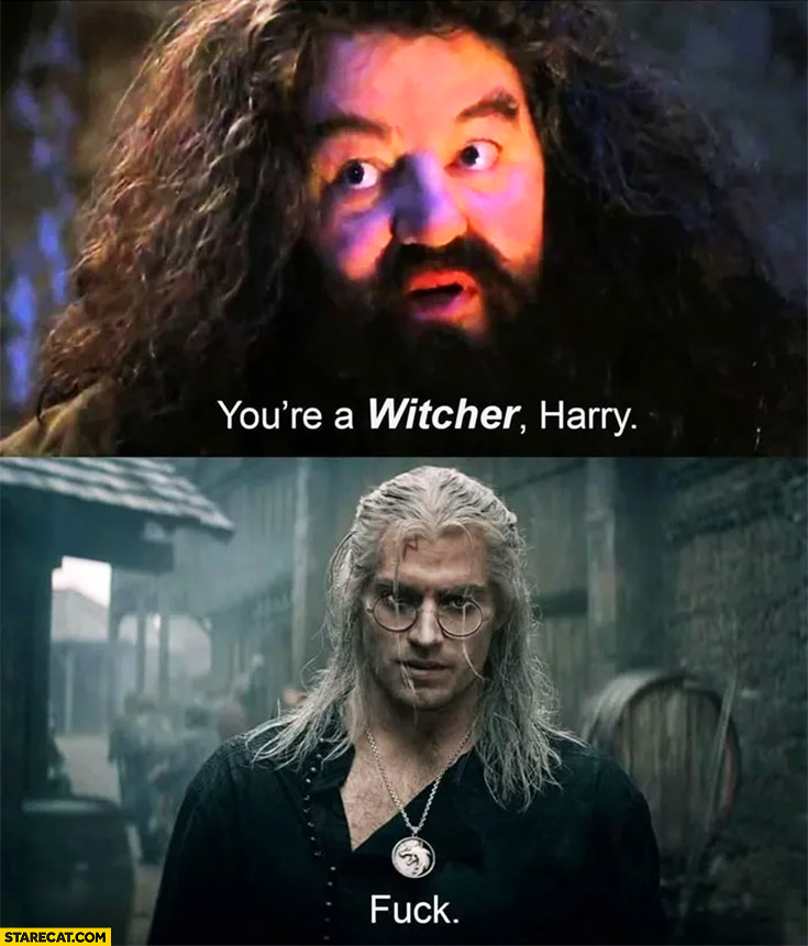 You're a Witcher Harry fck Harry Potter Geralt