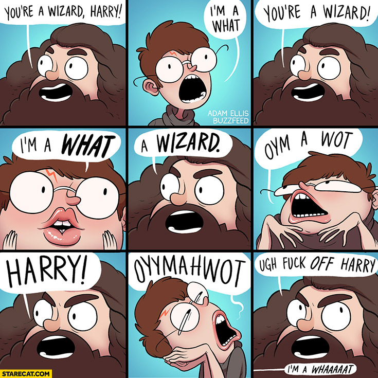 You're a wizard Harry, I'm a what? Hagrid Harry Potter comic