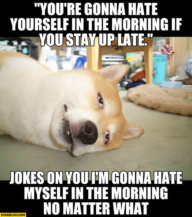 You're gonna hate yourself in the morning if you stay up late. Jokes on you I'm gonna hate myself in the morning no matter what. Tired dog